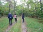 27.09.2019 -  Wyjazd na grzyby do Jamnicy